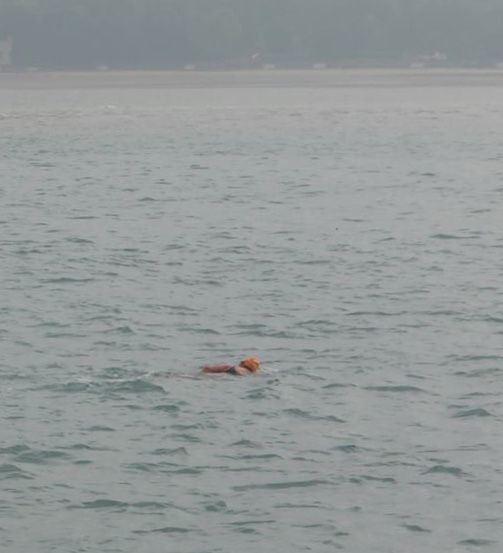 Sea_swimmer